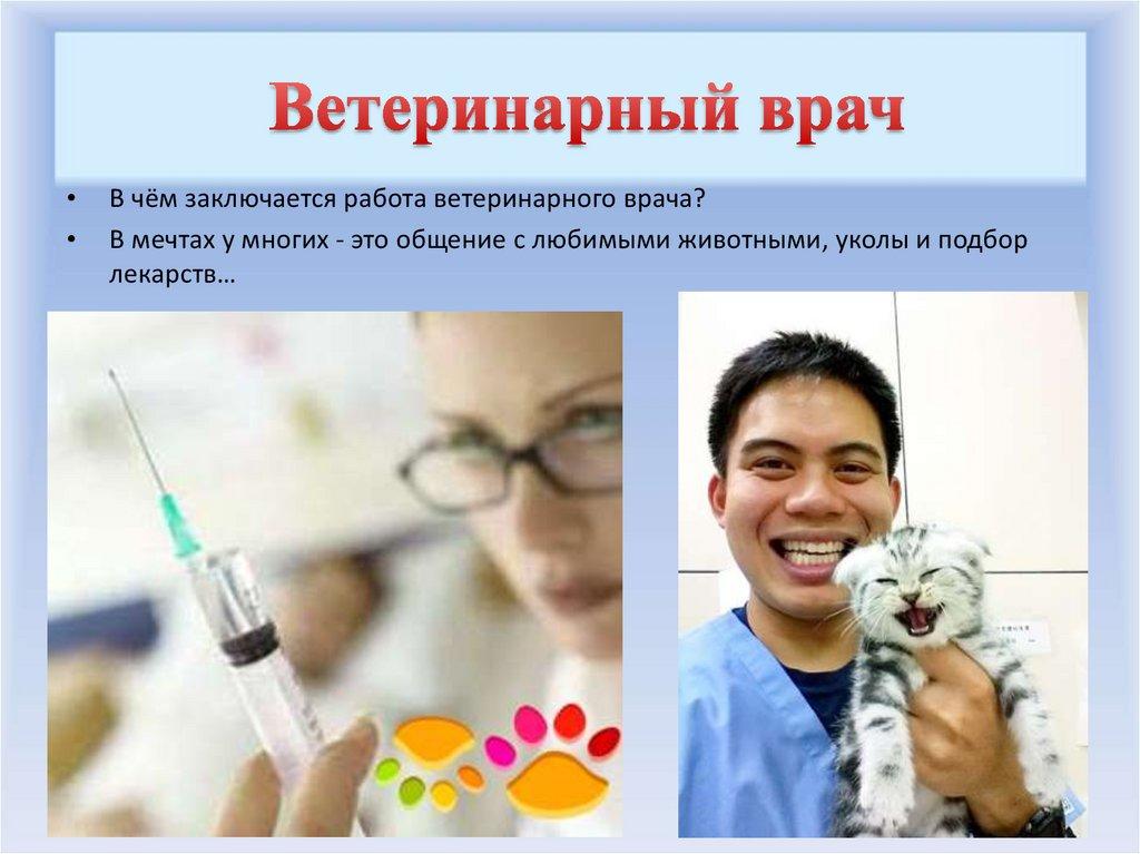veterinar ppt