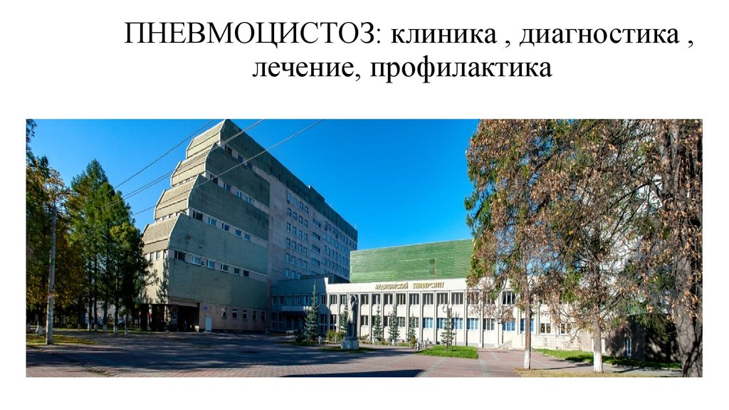 Медицинский центр ВЭССЕЛ КЛИНИК – диагностика и лечение в ...