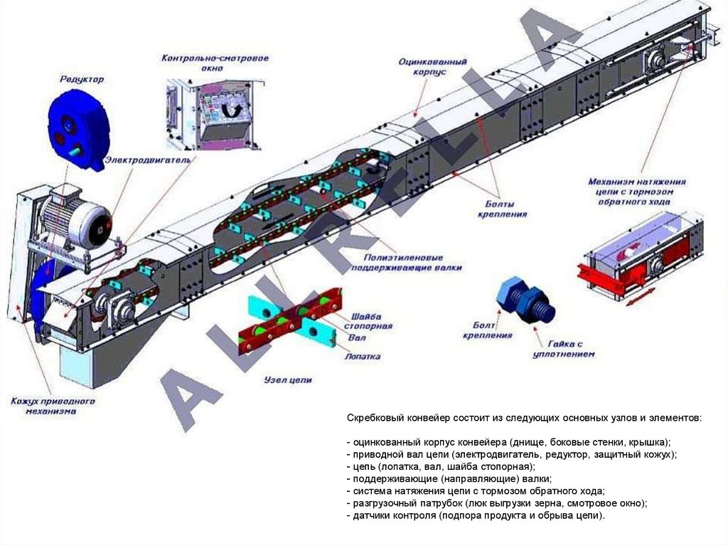 конструктивные особенности транспортеров