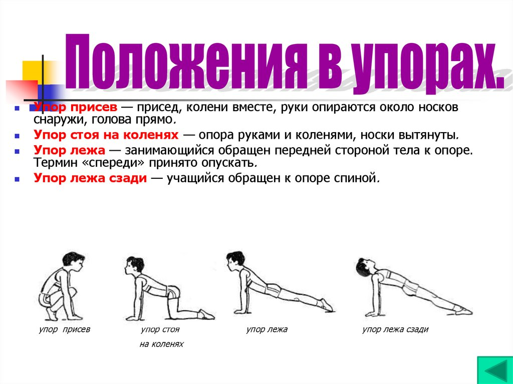 Положение тела когда руки находятся ниже точки опоры ноги касаются пятками пола витал систем цептер массажер