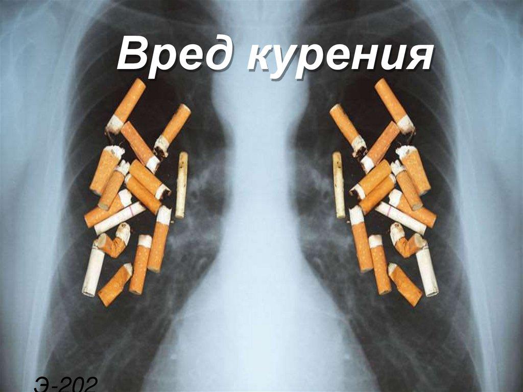 Вред от сигарет онлайн витрины для табачного изделия